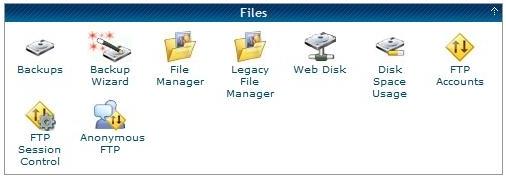 cPanel Files